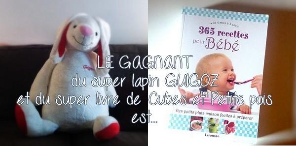 Jeu Guigoz et 365 recettes pour bébé {RESULTAT}