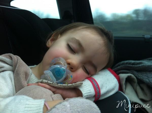 endormie-dans-son-siege-auto-kiddy.jpg