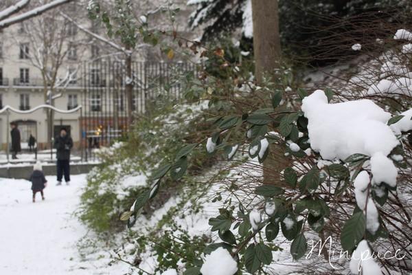 nature-dans-la-neige.jpg
