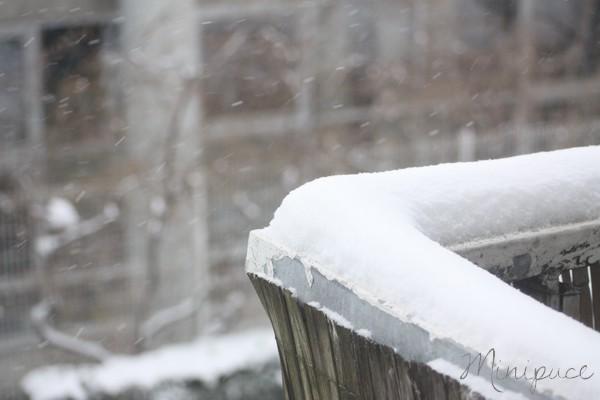 neige-au-balcon.jpg
