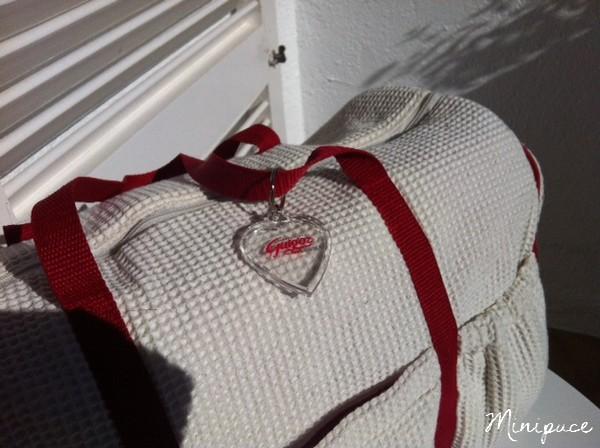 sac-a-langer-rouge-et-blanc-guigoz.jpg