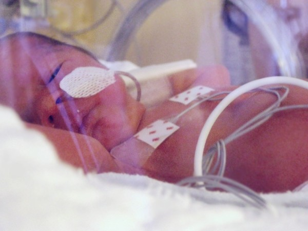 premature bebe we love prema untibebe weloveprema
