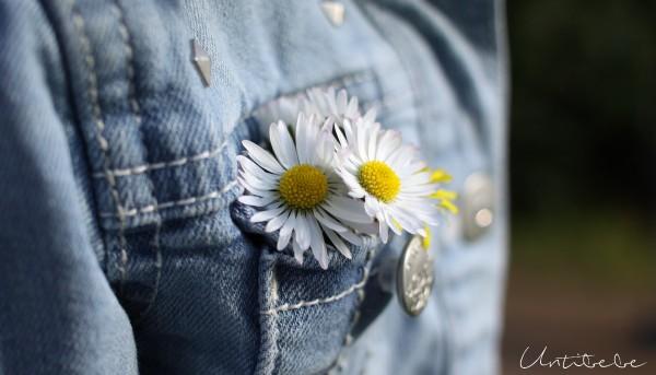paquerettes poche jean