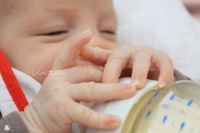 lait entier ou lait de croissance