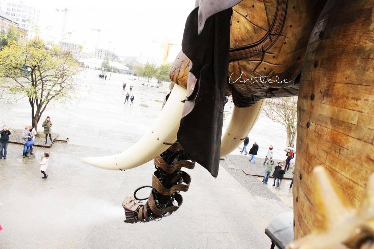 a bord elephant machineries de l'ile trompe