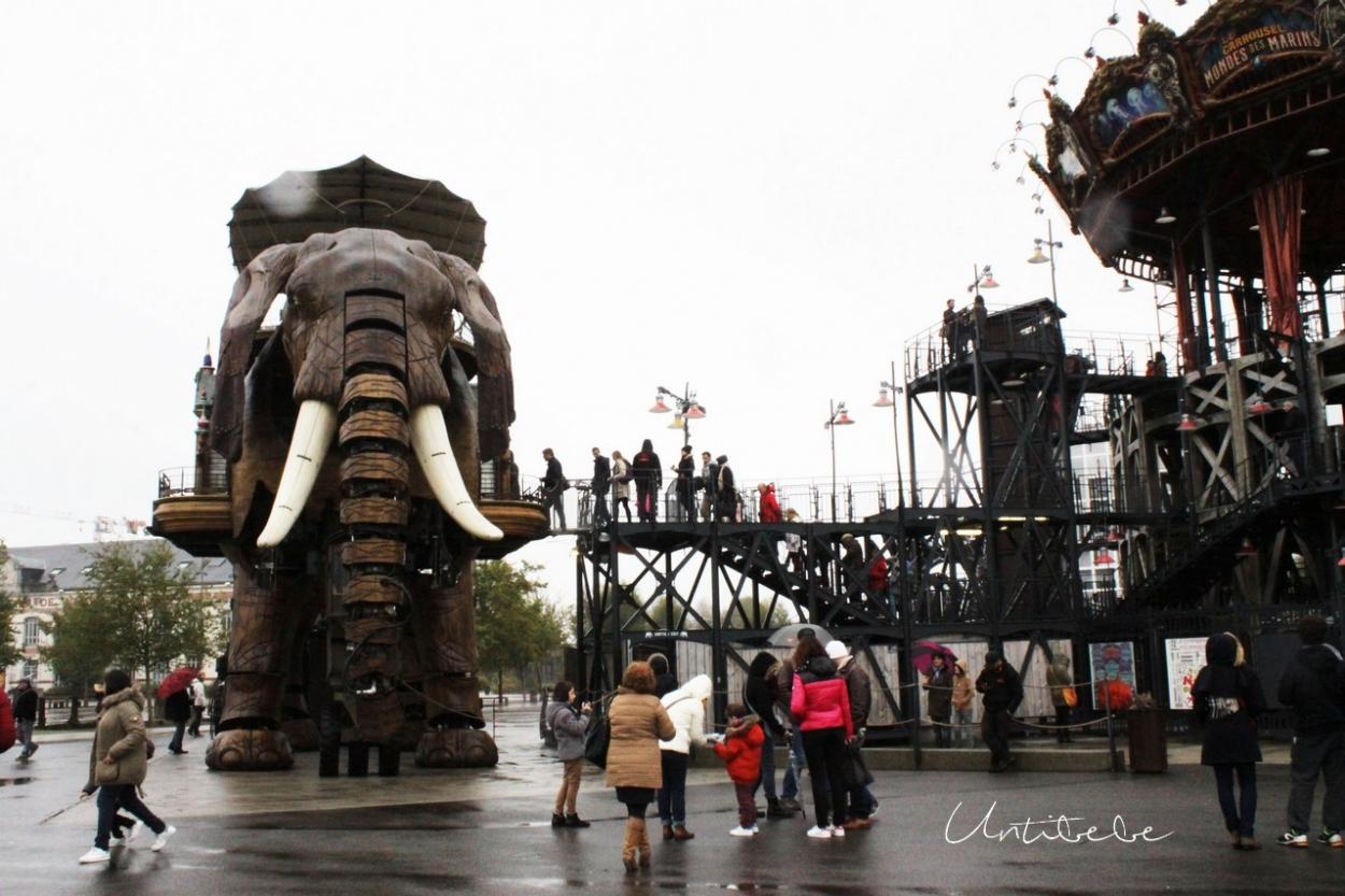embarcadaire elephant nantes