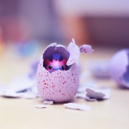 hatchimals oeuf