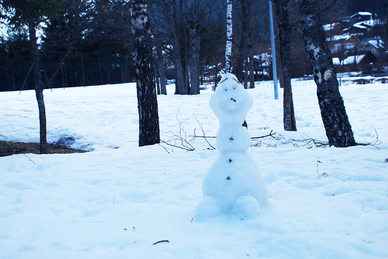 Bonhomme de neige olaf reine des neiges untibebe family - Bonhomme de neige olaf ...